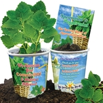 We Appreciate Your Commit-MINT & Making A Difference Planter Set