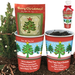 Appreciation & Recognition Christmas Tree Planter Set  Christmas Tree Seeds Planter Set. Douglas Fir Tree planter, Merry Christmas Tree planter Set, Catholic School planter gift, Appreciation, Recognition, Planter, Gift, Set, Making A Difference, Budget Friendly,