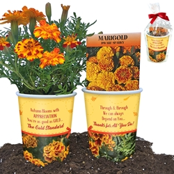 """Youre as Good as GOLD...The Gold Standard"" Employee Appreciation Marigold Planter Set  Marigold flower gifts, appreciation planter sets, Employee appreciation planters, employee recognition planters, appreciation, planters, Autumn staff gift ideas"